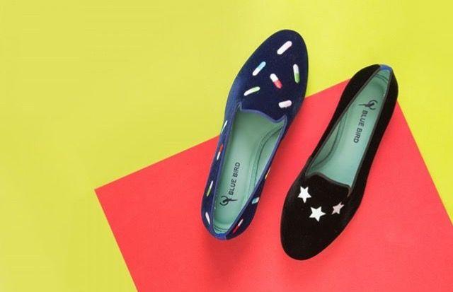 blue-bird-shoes-rio-de-janeiro_10 blue bird shoes