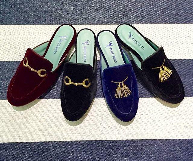 blue-bird-shoes-rio-de-janeiro_3